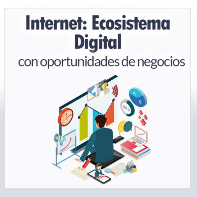 Internet: Ecosistema Digital con oportunidades de negocios