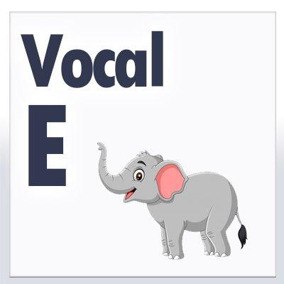vocal e